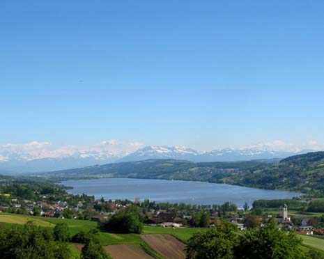 Immobilien Hallwilersee